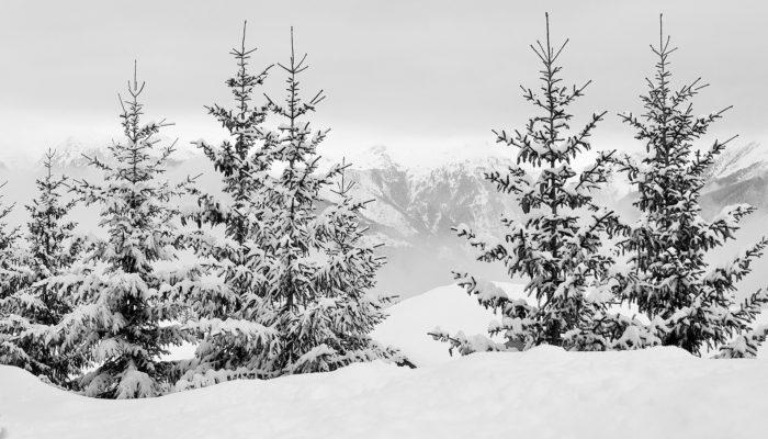 séjour au ski dans les Vosges